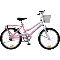 Bici Tomaselli Lady R 20 C Accesorios