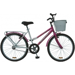 Bici Tomaselli Lady R 24 C Accesorios